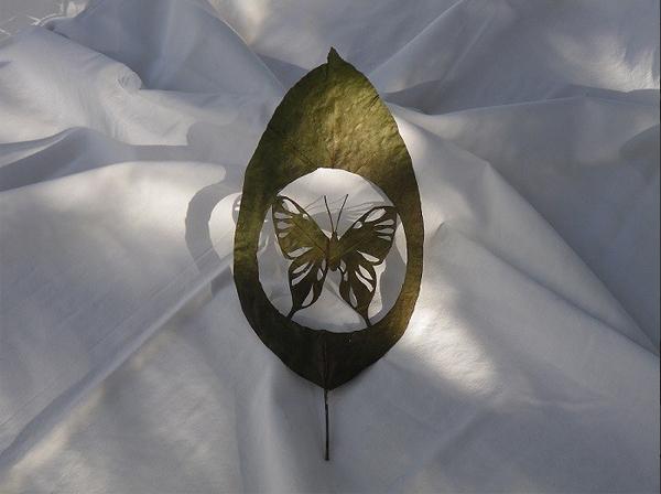 أعمال فنية الأشجار haidar1397465347685.