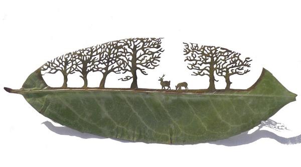 أعمال فنية الأشجار haidar1397465348019.