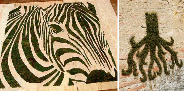 فن الرسم على الجدران بإستخدام الطحالب