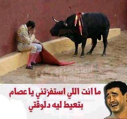 استفزنى ..وبكى haidar1431068426454.