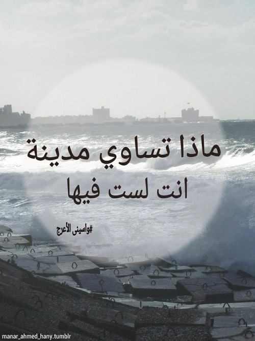 لتواضعنا! haidar1453831698253.